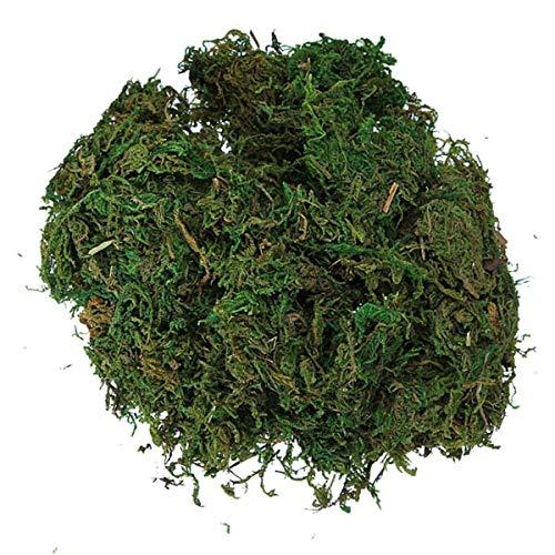 Carry stone Trageblatt grünes künstliches Rentiermoos für die Auskleidung von Pflanzen, Blumengirlande, Dekoration