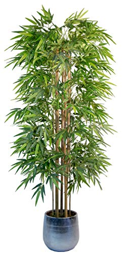 Maia Shop Bambusbaum mit Natürlichem Schilf, ideal für die Innendekoration, Baum, Künstliche Pflanze (180 cm), Bamboo